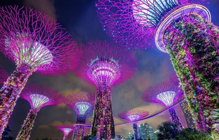 SINGAPORE - FEB 11 , 2017 : Super tree in Garden by the Bay, Singapore.