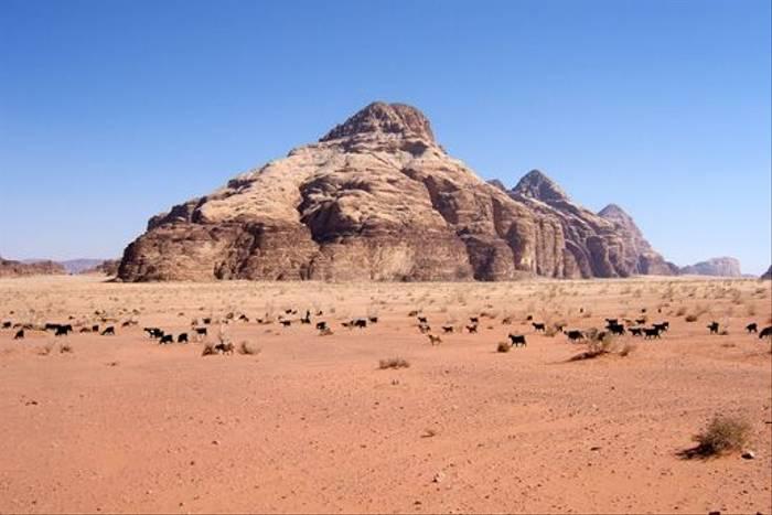 Wadi Rum (Geoff Carr)
