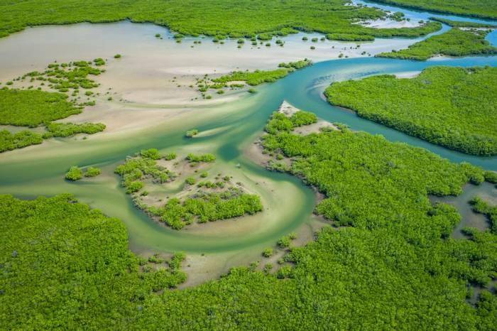 Saloum Delta National Park, Joal Fadiout, Senegal shutterstock_1571147293.jpg
