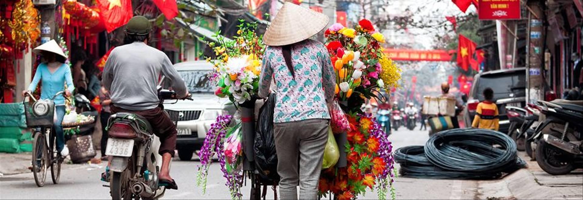 STock Viet Hanoi Web