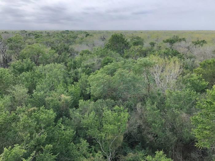 Rio Grande Valley, South Texas