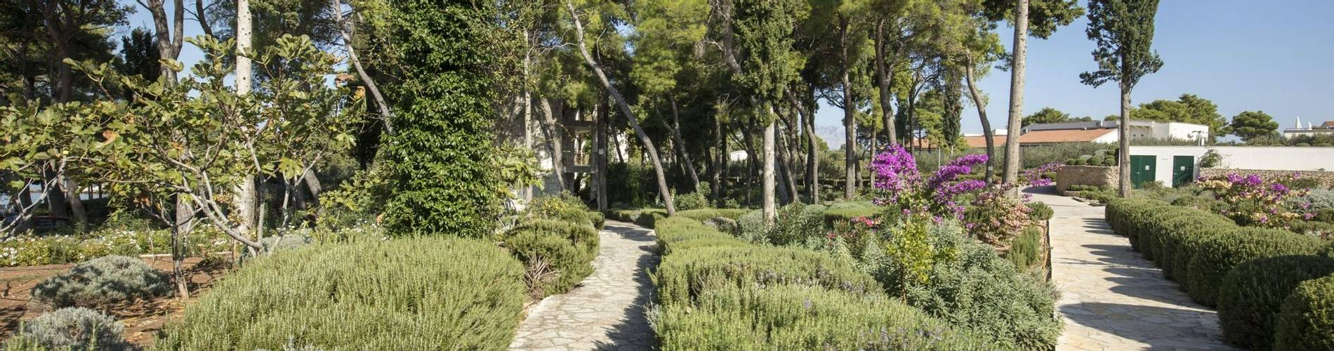 07 Resort_Velaris - Garden (5) (1).jpg