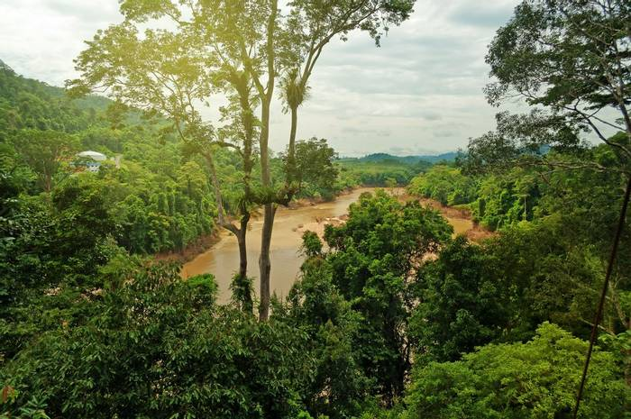 Taman Negara, Malaysia. shutterstock_183071921.jpg