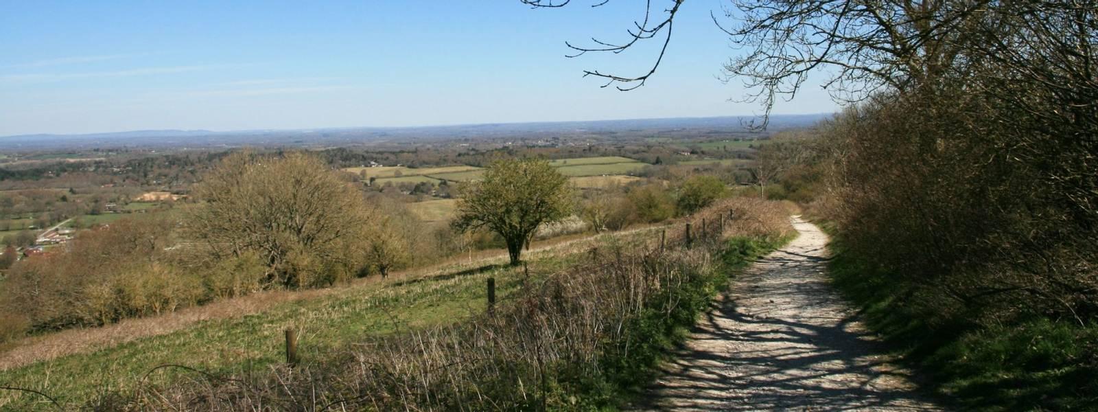 Barnsfarm Hill Path to Washington.JPG