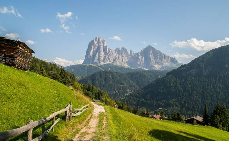 The Dolomites - Selva - AdobeStock_261449108.jpeg