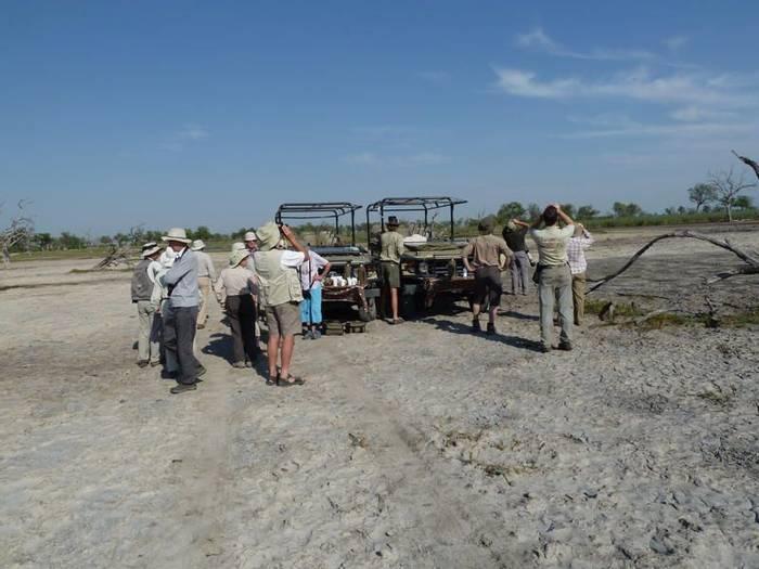 Coffee break Dead tree island Botswana