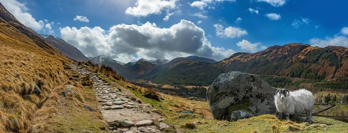 Scottish Highlands - Family - AdobeStock_111152735.jpeg