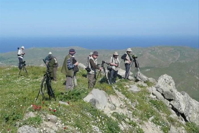 Birdwatching at Ypsilou