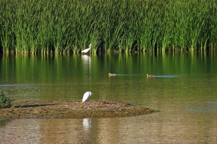 Agia Lake