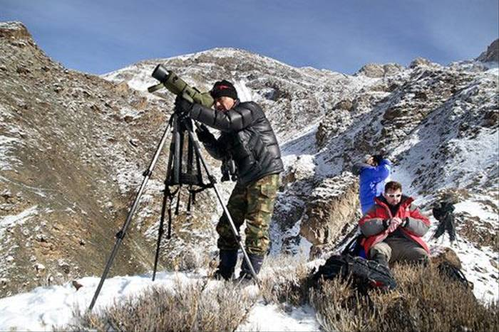 Scanning the valley for Snow Leopards