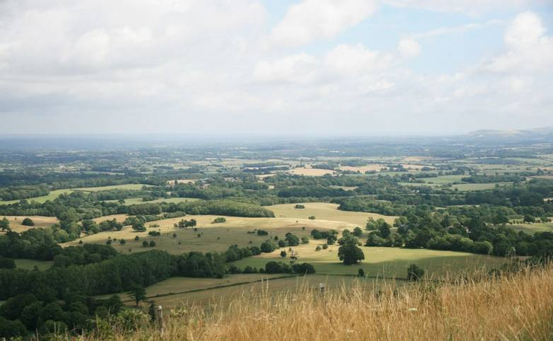 View North from Chanctonbury Ring.JPG