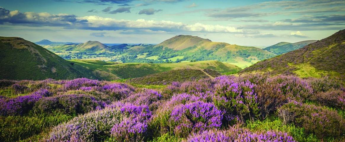 The Long Mynd in the Shropshire Hills