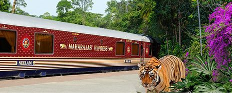 India's Maharajas' Express & Luxury Asia Discovery