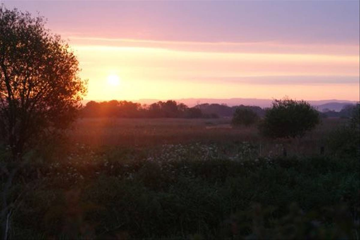 Ham Wall sunrise (Ed Drewitt)