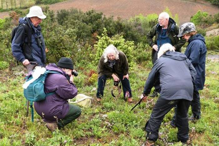 Some of the group admiring a Lady Orchid