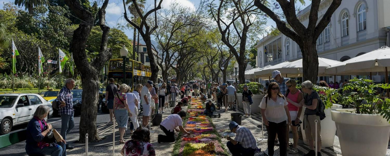 Flower Festival Credit Visit Madeira & Francisco Correia.jpg
