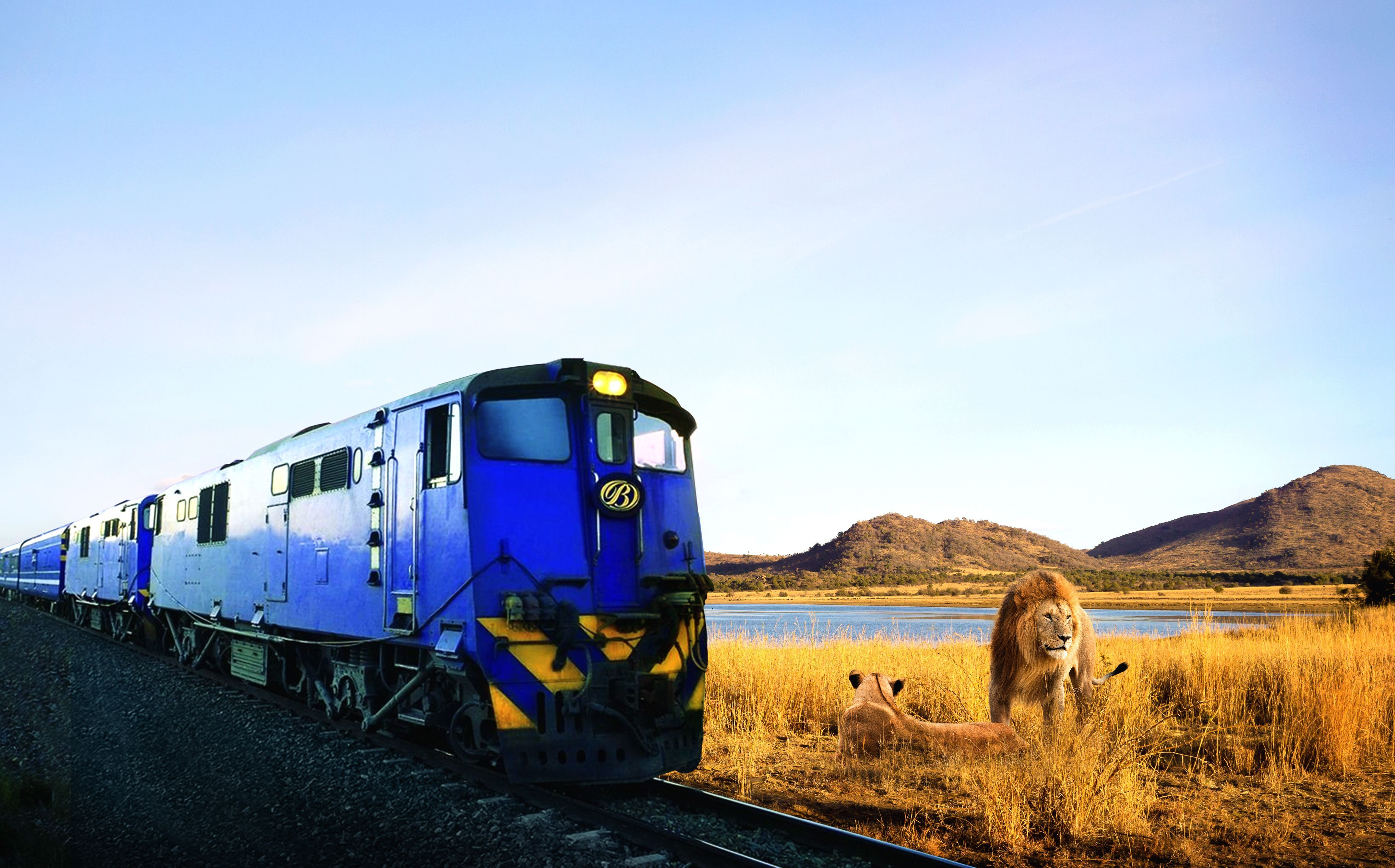 Wilds of Africa: Big Five Experience, Blue Train Traveller and Cunard Voyage