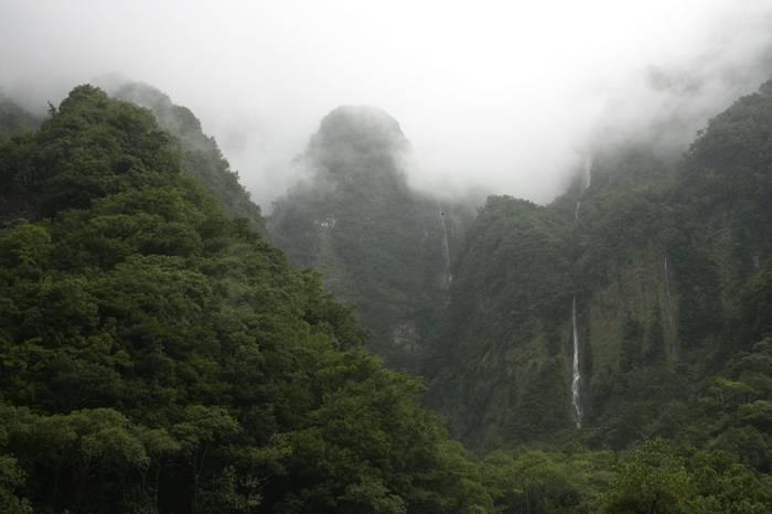 Chao de Ribeira, Madeira (Catherine Strong)