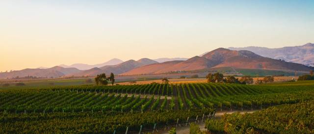 california-winery-shutterstock.jpg