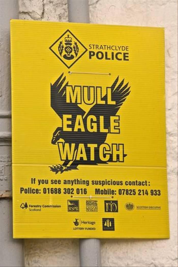 Mull Eagle Watch Poster (Dani Free)