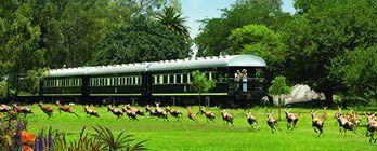 Africa Rail & Victoria Falls Adventure