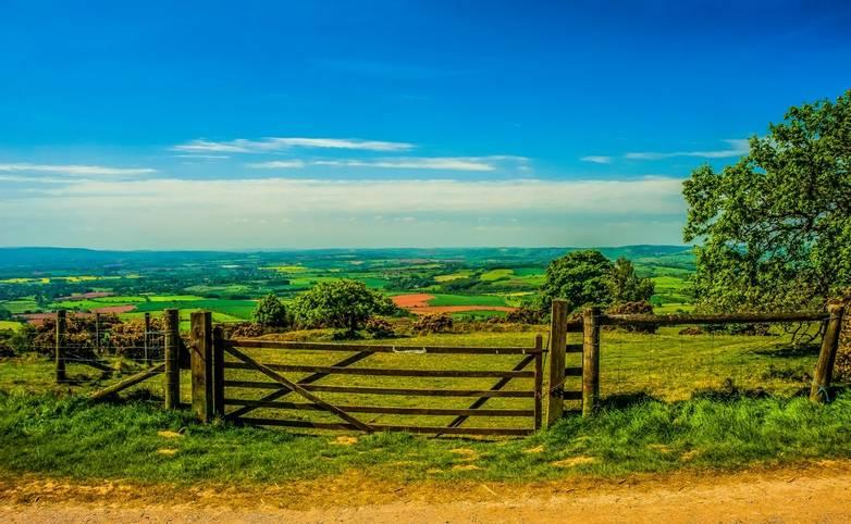 Selworthy - Exmoor - Walking with Sightseeing - AdobeStock_236109669.jpeg