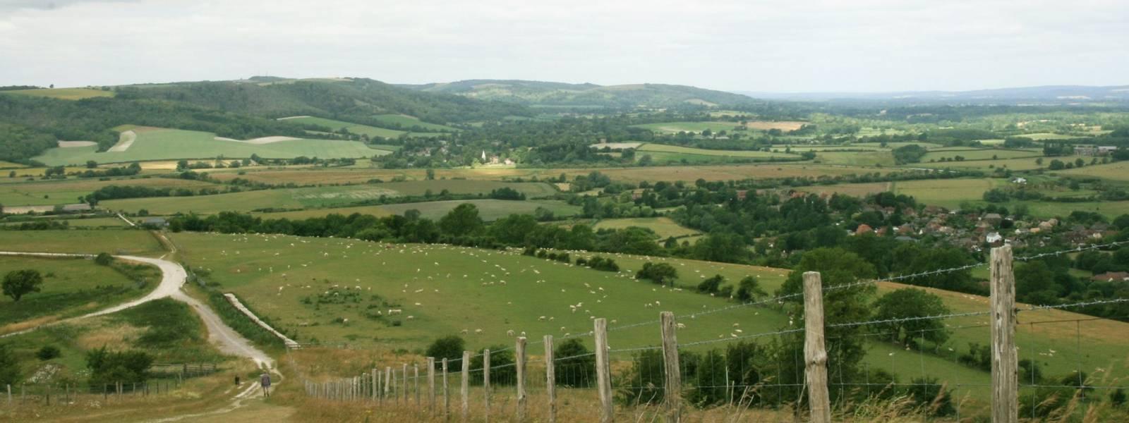 View_from_Rackham_Hill.JPG