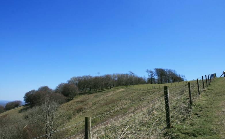 Path to Chanctonbury Ring.JPG