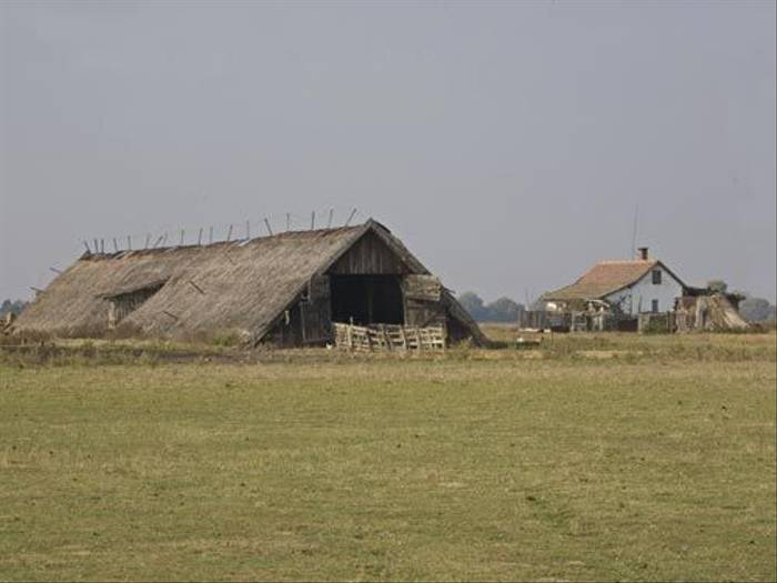 Sheep shed in Angyalhaza  (Malcolm Stott)