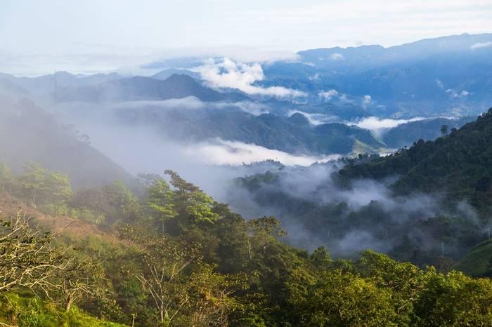 Choco, Ecuador Shutterstock 1051289096