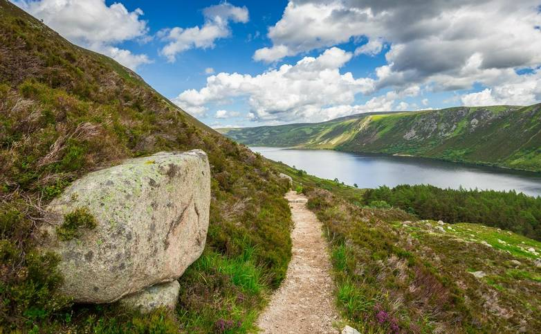 Cairngorms - Guided Trail - AdobeStock_67993210.jpeg