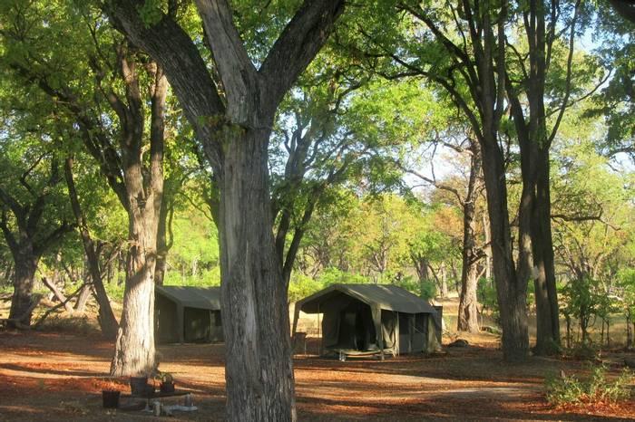 Moremi Camp Botswana (Rob Thatcher)