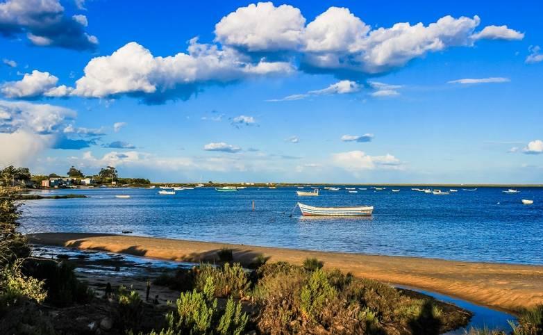 AdobeStock_175775953_Ria_Formosa_Natural_Park_Eastern_Algarve.jpeg