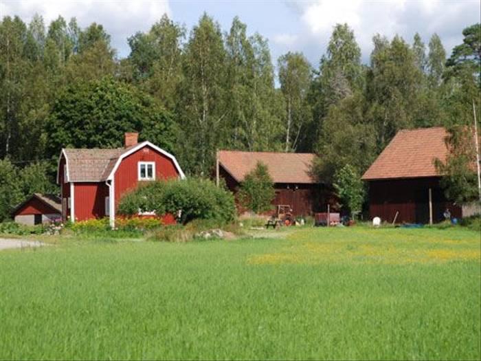 Traditional Swedish Farmhouse (Thomas Mills)