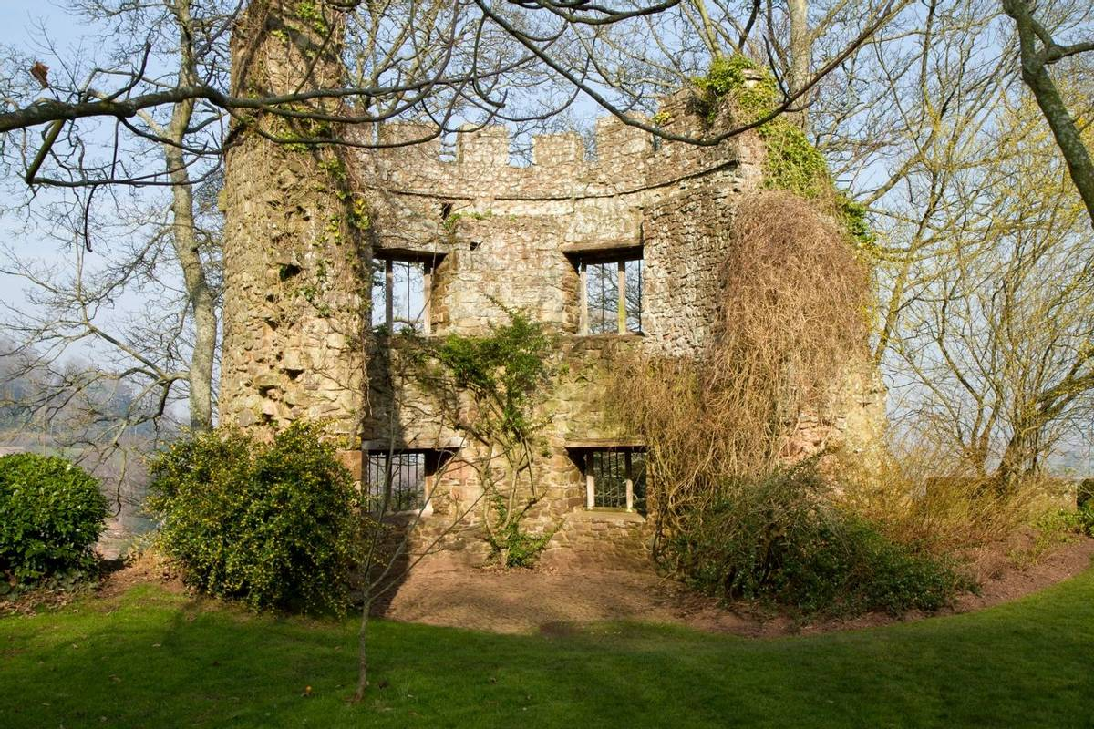 Selworthy - Exmoor -  Spring & Winter - AdobeStock_50335215.jpeg