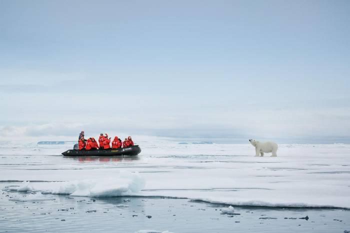 Polar Bear (John Bozinov).jpg
