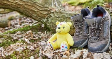 BBC Children in Need! Mascot, Pudsey Bear
