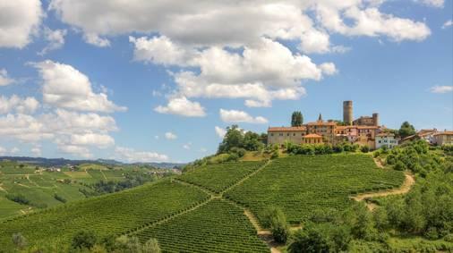 Piedmont Wine & Walking