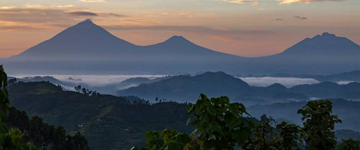 Virunga Volcanoes, Rwanda shutterstock_1068412496.jpg