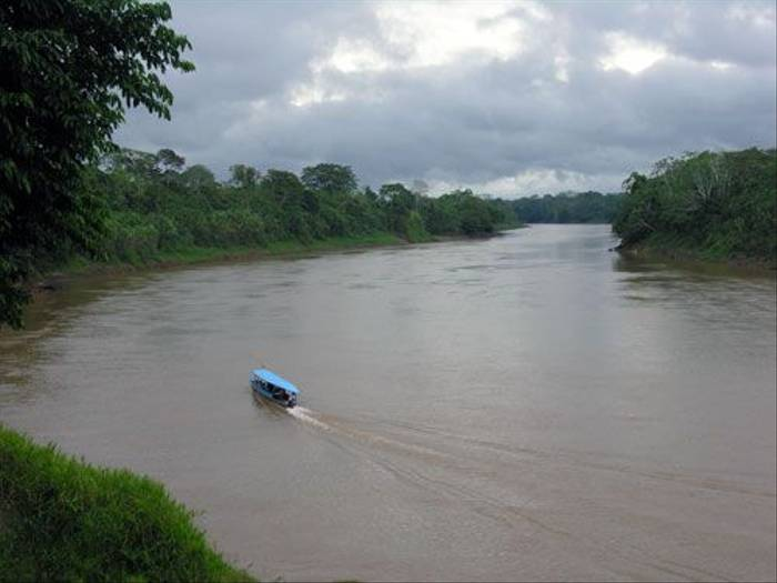 Tambopata River (Steve Wakeham)