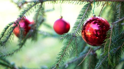 3-Night Exmoor Festive Guided Walking Holiday