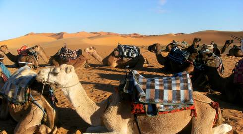 CASABLANCA to MARRAKECH (8 days) Moroccan Highlights