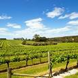 Margaret River Destination Image