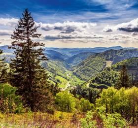 Breisach and Black Forest