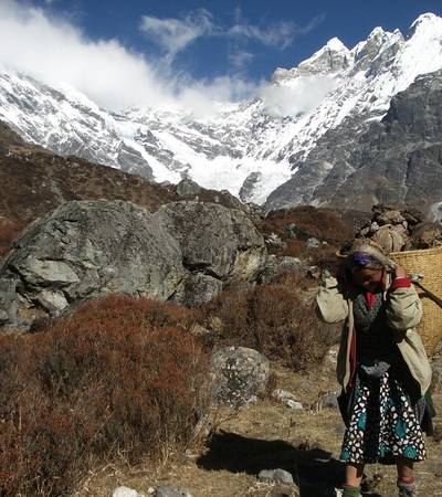 Sherpani in Langtang valley