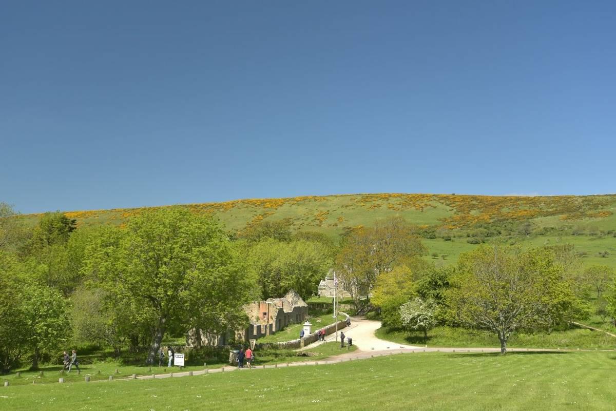 Lulworth - Dorset Coast - AdobeStock_90438386.jpeg