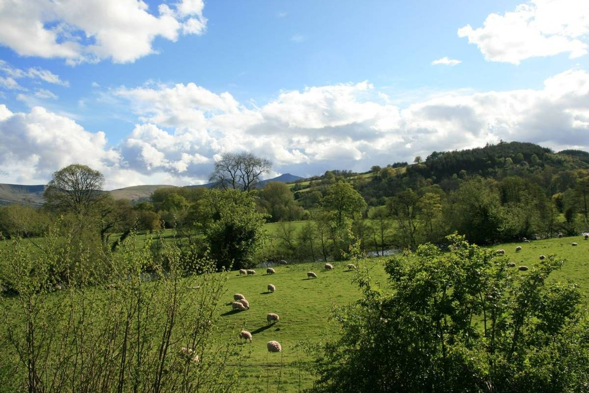 View from Brecon Canal towpath.JPG