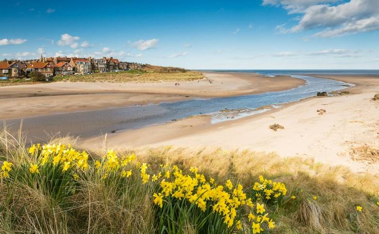 Alnmouth beach in spring