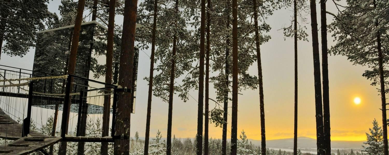 Tree hotel image credit - Lola Akinmade Åkerström and imagebank.sweden.se.jpg
