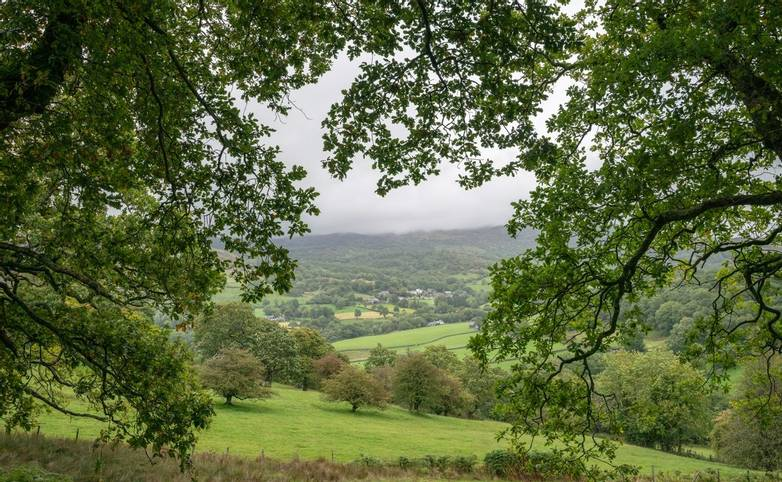 Landscape image of view from Precipice Walk in Snowdonia overlooking Barmouth and Coed-y-Brenin forest during rainy afternoo…